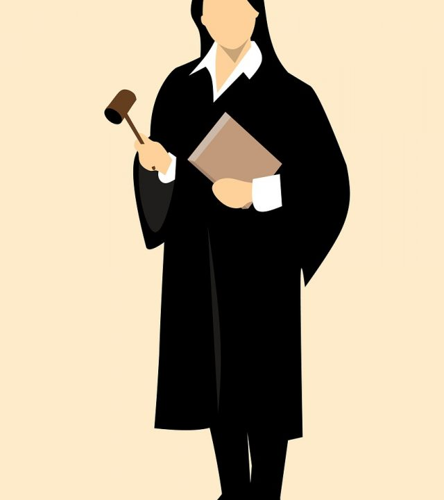judge, lawyer, attorney